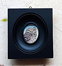 Little Owl Miniature